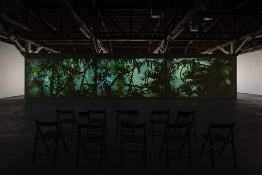 A dark room filled with empty chairs shows a video of plants projected along one wall
